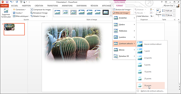 Powerpoint 2013 Fonctions De Base Estomper Les Bordures D