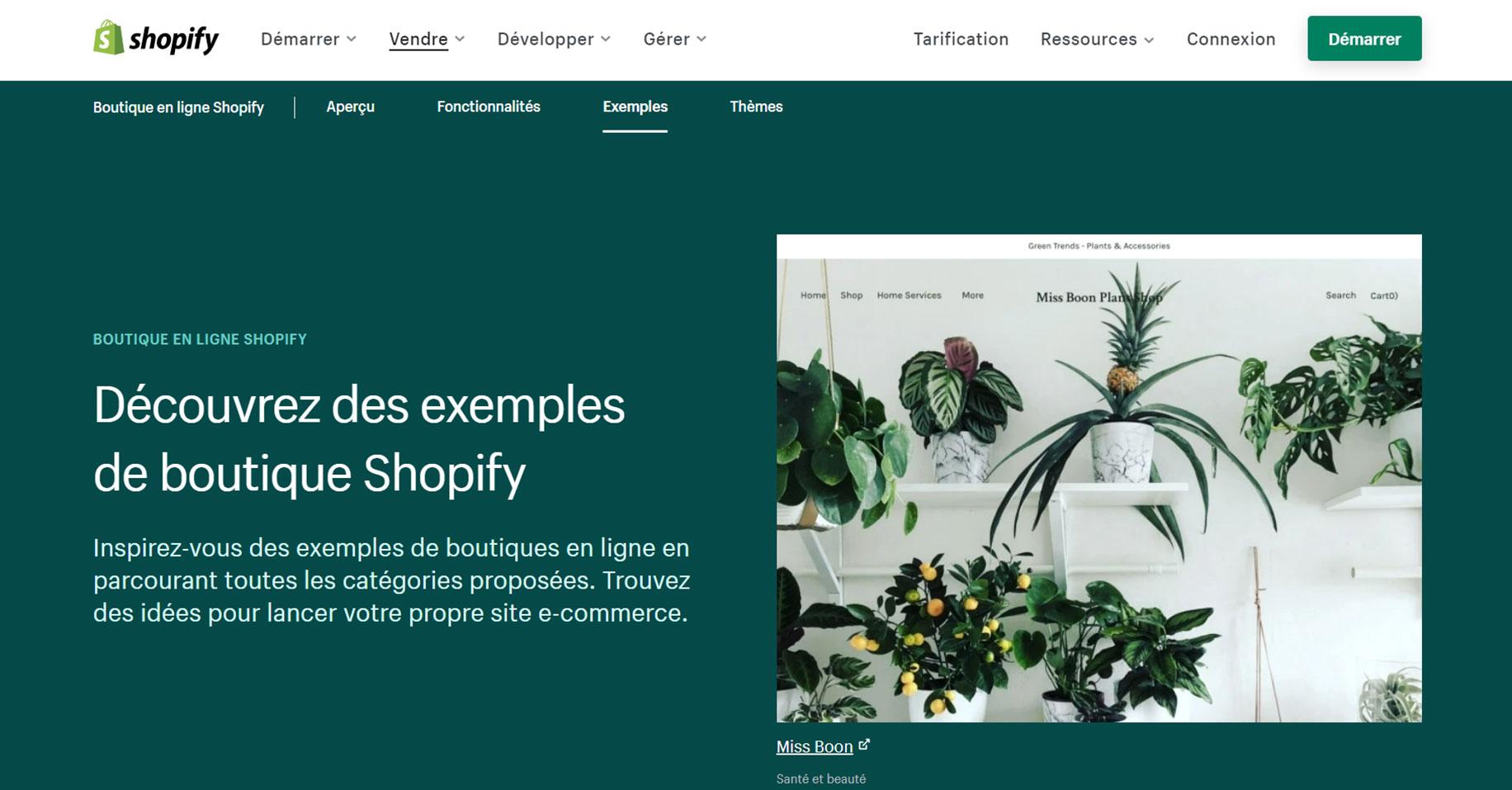 Ecran Shopify